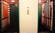 both-elevator2